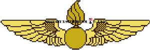 Naval Aviation Ordnance Wings Insignia