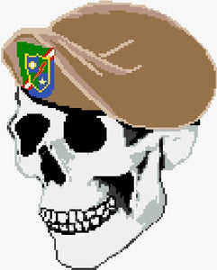 Ranger, 75th Beret on Skull PDF