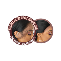 AALIYAH Melted Hairline Lace Front Wig