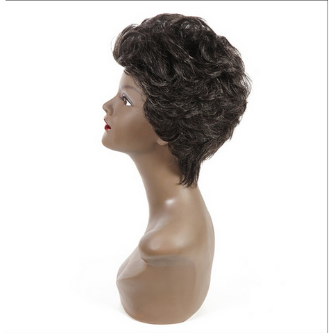Amy Short Curly Human Hair Wig - Elegance24seven