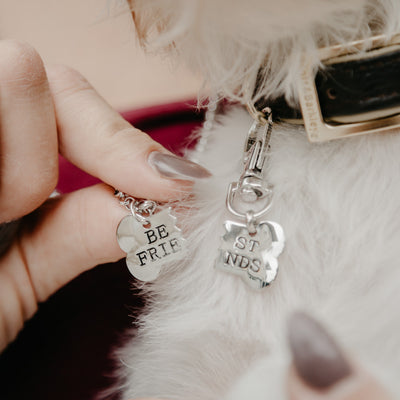 2pcs/set Gold Silver Color Dog Bone Best Friends Necklace