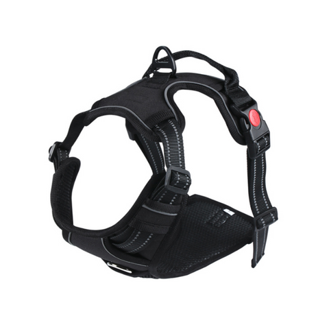 Doggy Gym Bag Gris