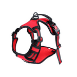 Doggy Gym Bag Negra
