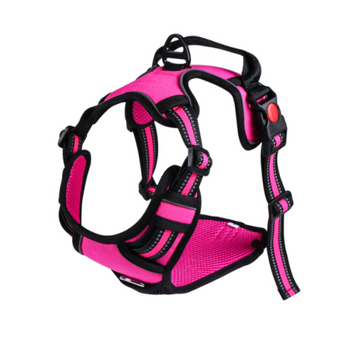 Doggy Gym Bag Roja