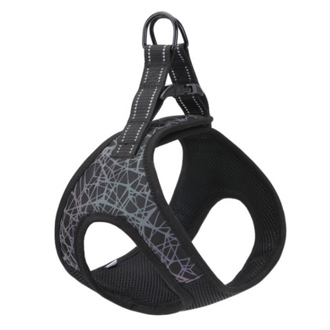 Doggy Gym Bag Verde Pastel