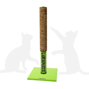 Green Scratching post