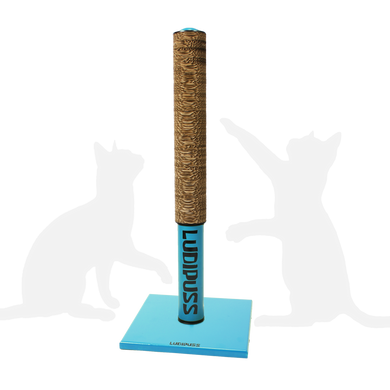Light Blue Scratching post