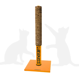 Orange Scratching post