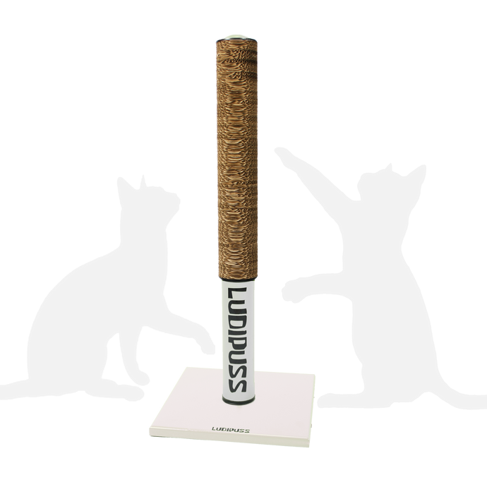 White Scratching post