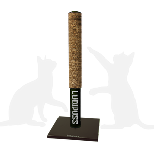 Black Scratching post