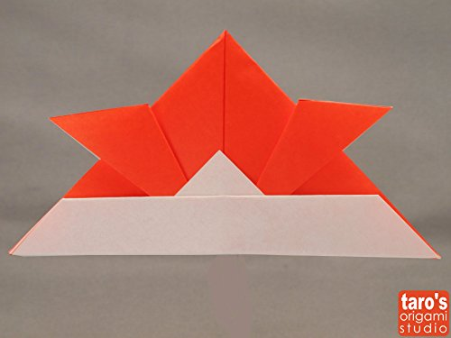 Origami 365: Includes 365 Sheets of Origami Paper for A Year of Folding Fun