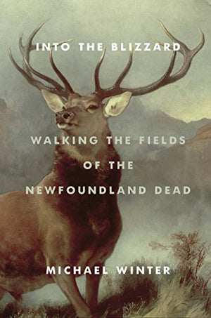 Into the Blizzard: Walking the Fields of the Newfoundland Dead