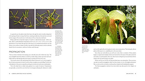 Carnivorous Plants: Gardening with Extraordinary Botanicals