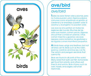 Animals of All Kinds Flash Cards - Bilingual (Spanish Edition)
