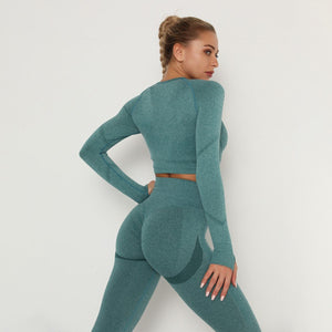 Women's Seamless Long-sleeve Top Belly Control Leggings Set
