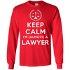 Image of Law Student Lawyer Almost A Lawyer Gift - Men Women T-Shirt
