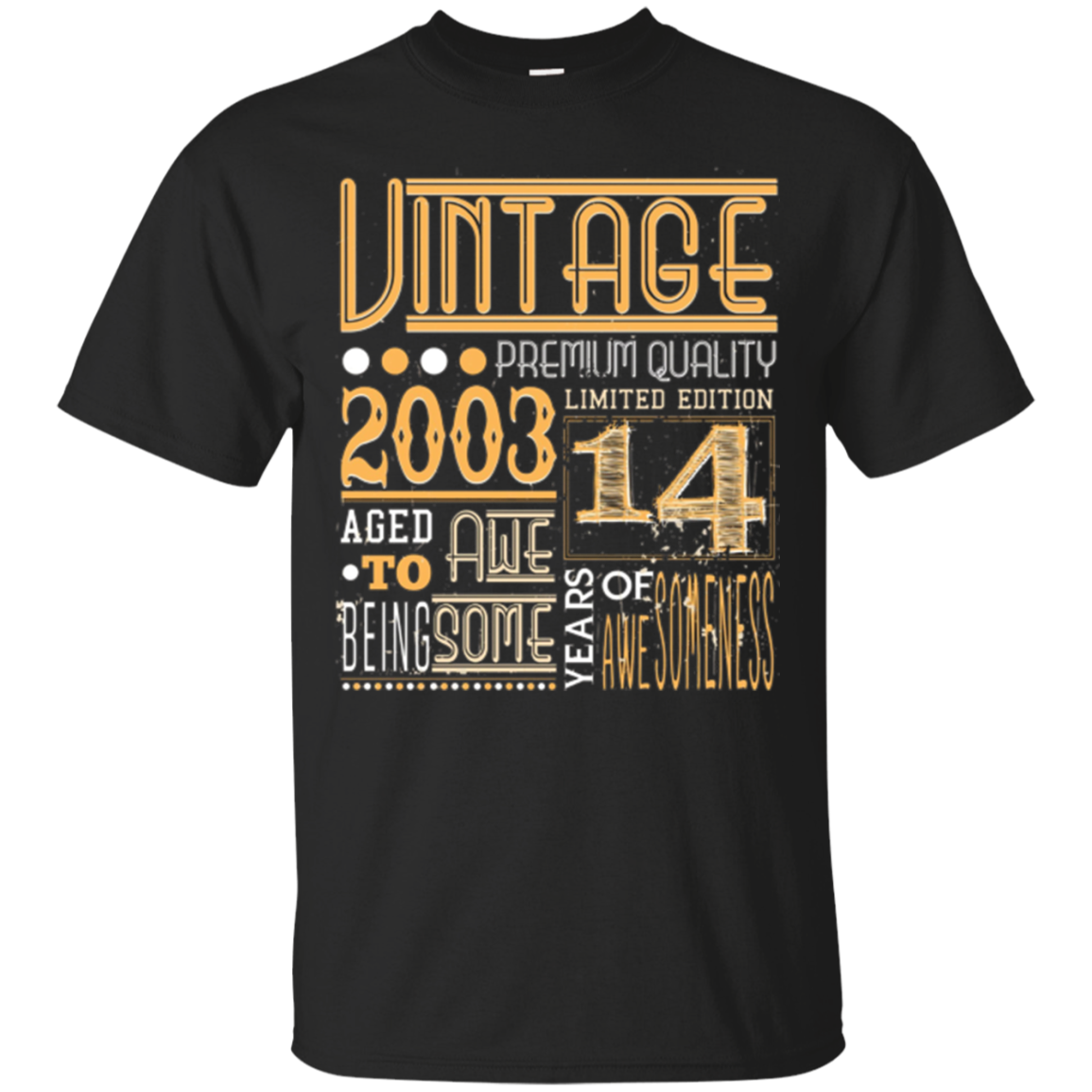 Vintage Born in 2003 14th Birthday 14 Years Old Awesome Gift