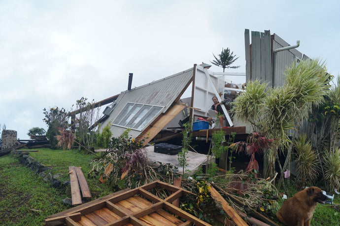 Tropical Cyclone Winston: Surviving the Fury