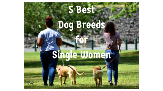 5 Best Dog Breeds for Single Women