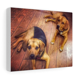 Custom Pet Canvas Print of Your Pet