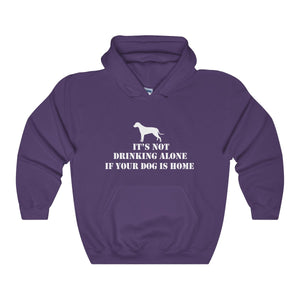 It's Not Drinking Alone If Your dog Is Home Unisex Heavy Blend™ Hooded Sweatshirt