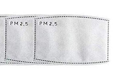 Mask Filter Inserts-N95 - 805 Masks