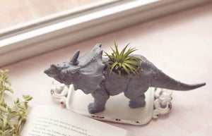 Dino Airplanter