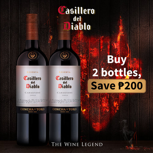 Casillero del Diablo Carmenere 2x 750mL Save P200