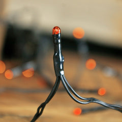 Harvest Rice String Lights, Battery Operated, Black Cord, Orange