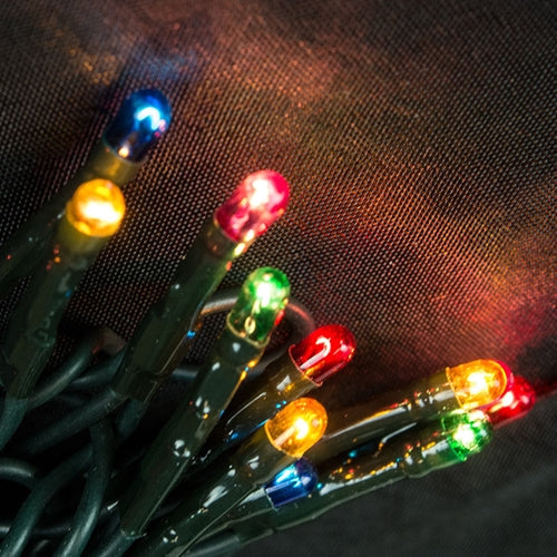 String Lights, 20 Rice Bulbs, Green Wire, Plug-In, Multi-Color