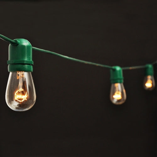 Commercial Edison String Lights, 48 Foot Green Wire, Clear