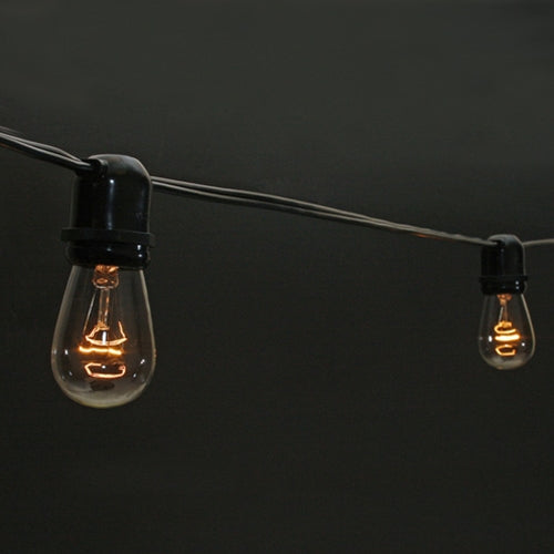 Commercial Edison String Lights, 100 Foot Black Wire, Clear