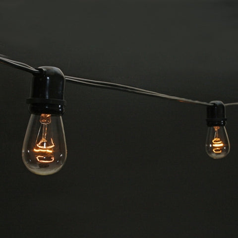 Commercial Edison Drop String Lights, 48 Foot Black Wire, Clear