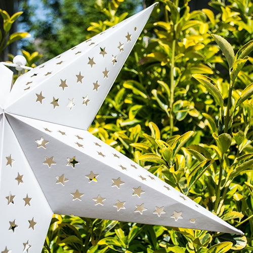 Paper Star Lantern, 24 inches, White