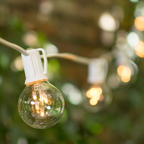 Grape Vine String Lights, 50 Warm White Bulbs, 10 Grape Clusters, Plug in, Burgundy