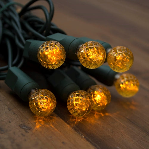 String Lights, Raspberry LED Bulbs, 24 ft, Outdoor, Plug-in, Yellow
