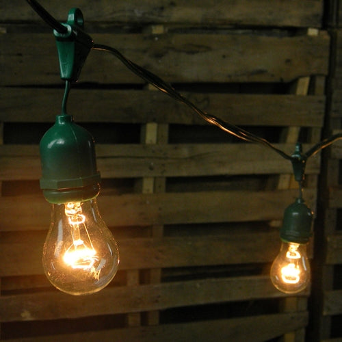 Commercial Drop String Lights, A15 Party Bulbs, 48 Foot Green Wire, Clear