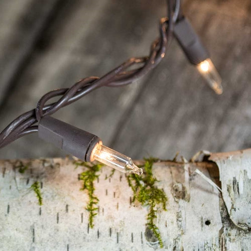 String Lights, 6 ft, Plug-in, Brown Wire, Clear