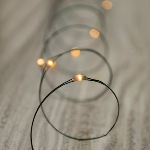 Invisilite LED Fairy Lights, Green Wire, 5 Foot, Warm White