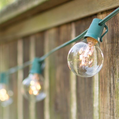 Globe String Lights, 2 Inch E17 Bulbs with Rice Lights, 25 Foot Green Wire, Clear