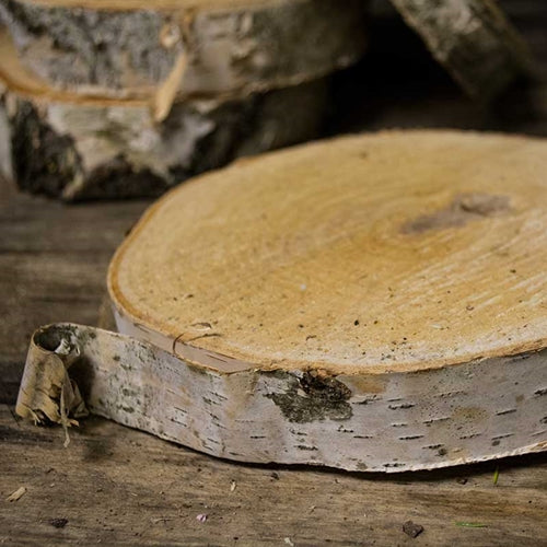Wood Tree Round, Natural Birch Slab, Rustic, 7 to 9 in x 1 in, Medium