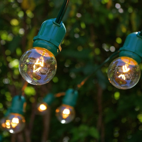 Commercial Globe String Lights, 100 Foot Green Wire, 2 inch Clear Bulbs