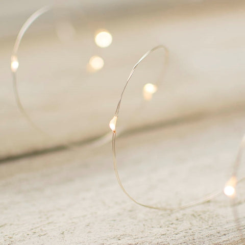 LED Fairy Lights, 10 Foot Silver Wire, 60 LEDs, Warm White