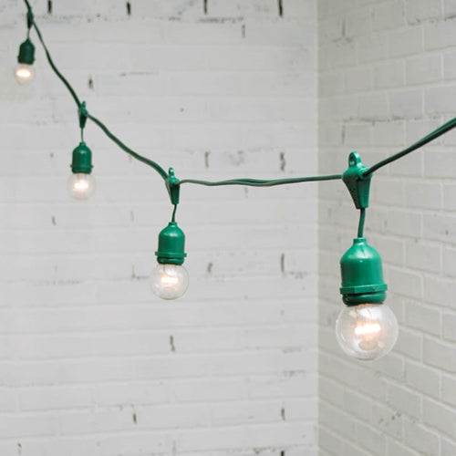 Commercial LED Drop Globe String Lights, 48 Ft Green Wire, Warm White
