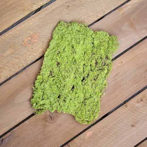 Moss Mat, Realistic Decorative Placemat, 9 in x 12 in, Green
