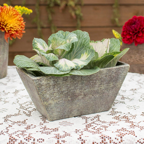 Ceramic Planter Box, Distressed, Rectangular Container, 4.25 in tall