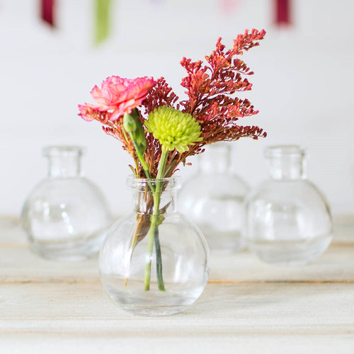 Glass Bud Vase, Round Bottle, 2.75 in Diameter x 3.25 in, Clear, 12 pack