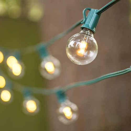 LED Globe String Lights, G40 Bulb, 25 Ft Green C7 Strand, Warm White