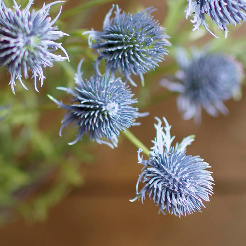 Thistle Spray, 7 Bloom Stem, Realistic Decorative, 36 inches, Purple