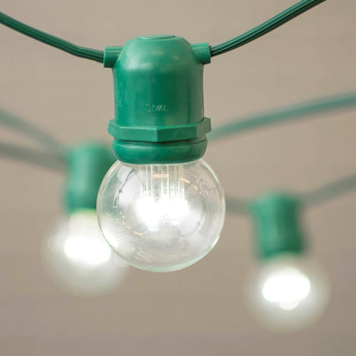 Commercial LED Globe String Lights, 48 Foot Green Wire, 2 in Bulb, Cool White